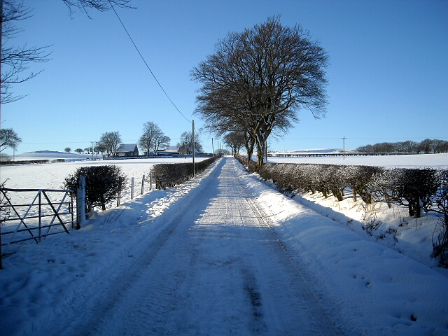 Snow Covered Road to Highhill Cottage