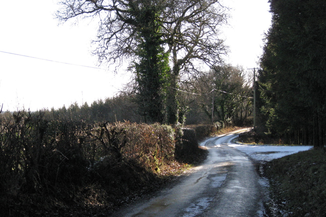 Lane to Trusham at junction with forestry road