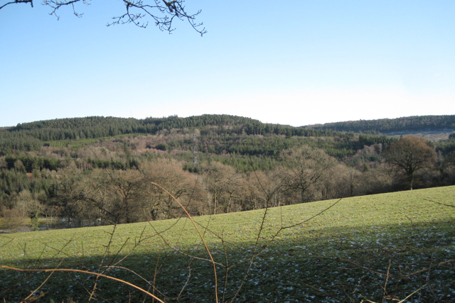 Hillside west of Kiddens Plantation