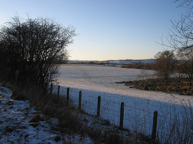 Fields near Allt-ddu, Cors Caron Nature Reserve