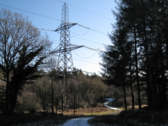 Power lines cross forestry track, Kiddens Plantation