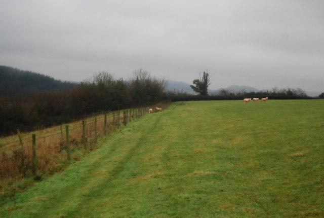 Footpath to Roebuck Farm