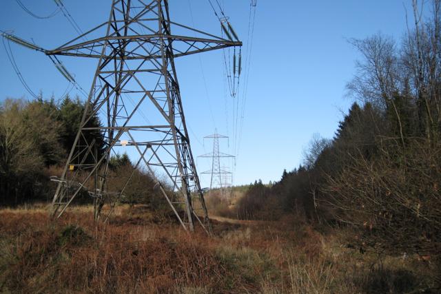 Power lines through Kiddens Plantation