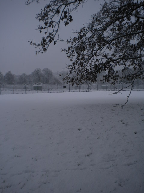 Golders Hill Park in snow