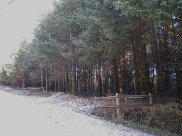 Access across a ditch, Kiddens Plantation