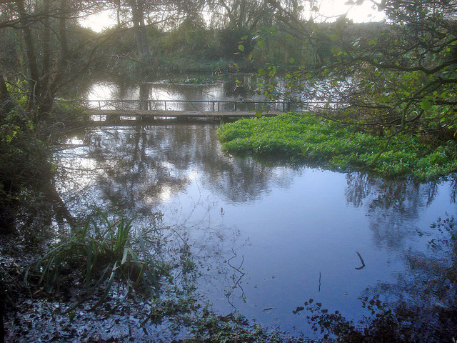 Mill pond near Papplewick