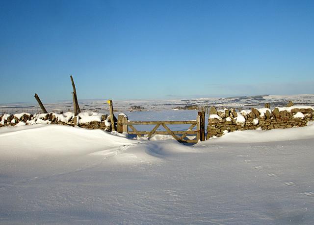 Gilmonby Moor gate