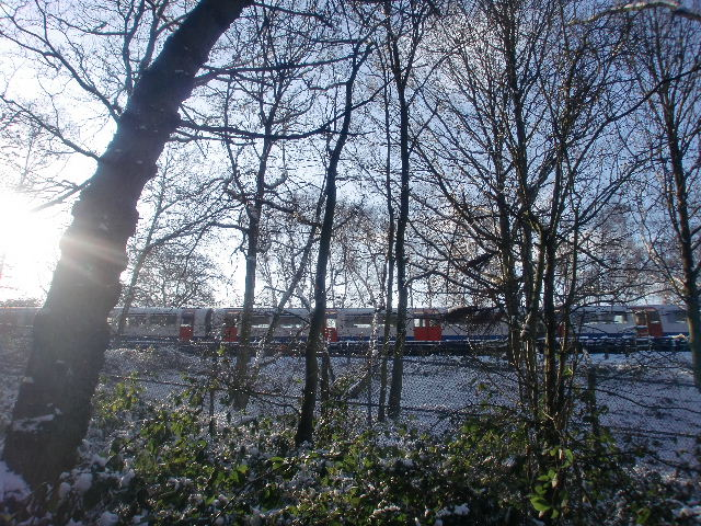 Piccadilly Line train adjacent to Trent Park, London N14