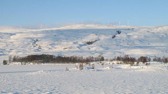 Moorland beside Loch Lundie