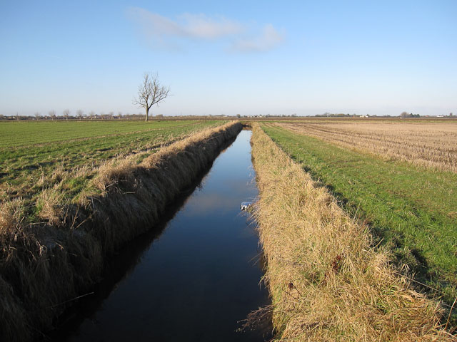 Ditch to East Fen Drove