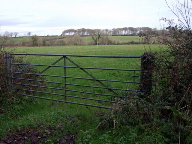 View towards valley of Cleddau Wen