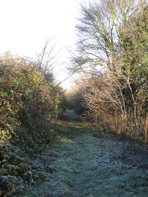 Footpath to Moor Farm
