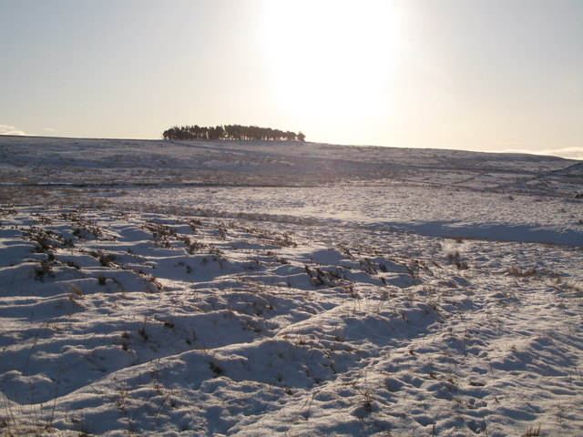 A snow covered Haggerstone Moss