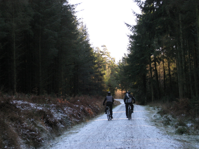Mountain-biking couple, Haldon Forest Park