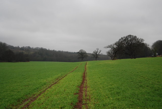 Footpath to Leigh Cottage