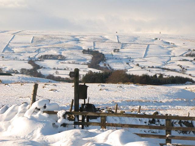 Snowy pastures east of Park Gates Farm