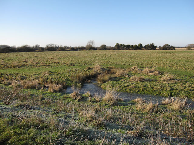 Wet grassland at Moor Farm