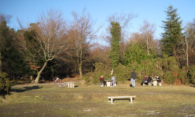 Picnics, Bird of Prey viewpoint, Haldon Forest Park