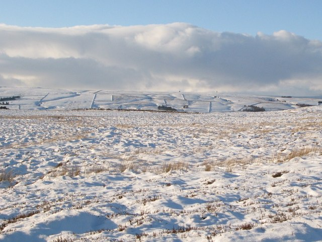 Snow covered Haggerstone Moss