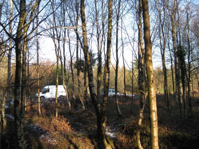 Small car park, Haldon Forest Park