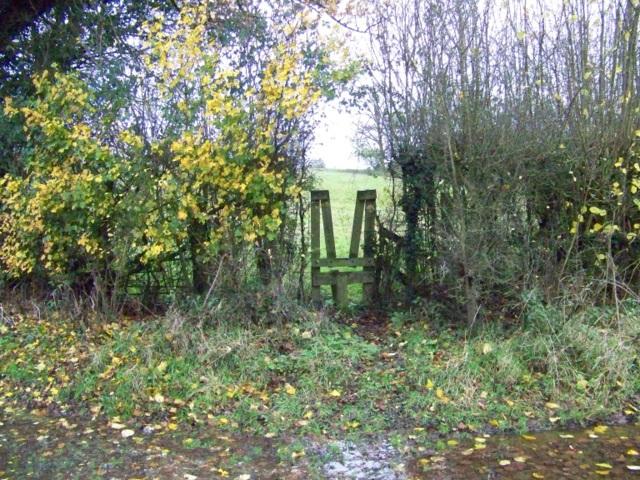 Stile, Lambourn Woodlands