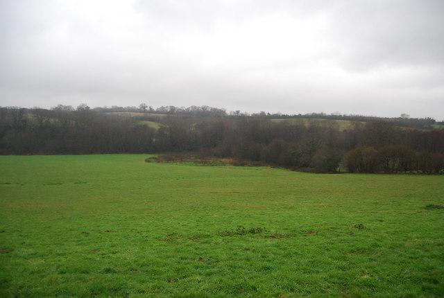 Field off Leigh Lane