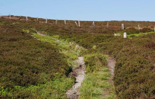 Llwybr Gogledd y Berwyn
