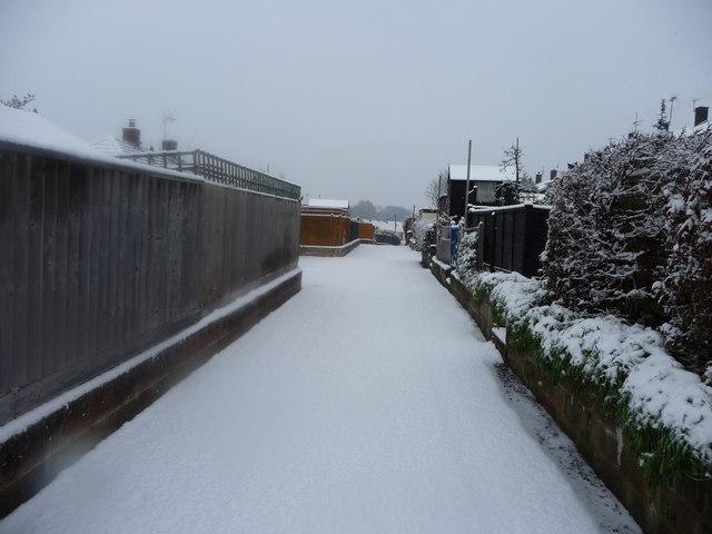 Tiverton : Small Back Road