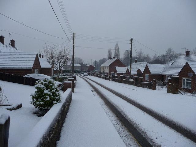 Tiverton : Branscombe Road