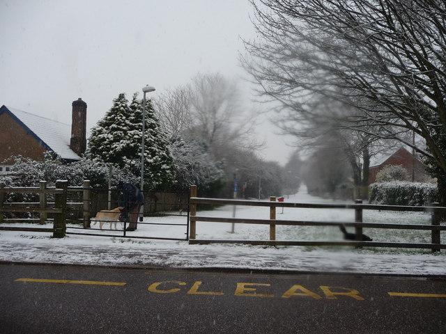 Tiverton : Cowley Moor Path
