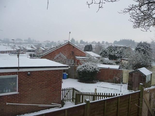 Tiverton : Cowleymoor Snow