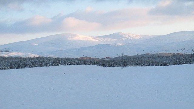 Moorland near Loch Lundie