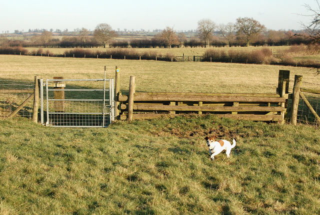 Bridleway gate and jump east of Willoughby House