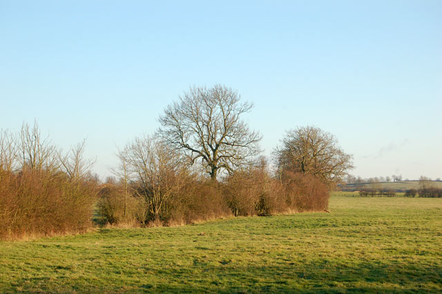 North of the bridleway from Willoughby House to Braunston