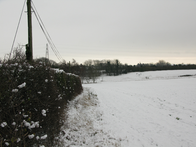 Field and hedgerow along the Eastry to Selson road