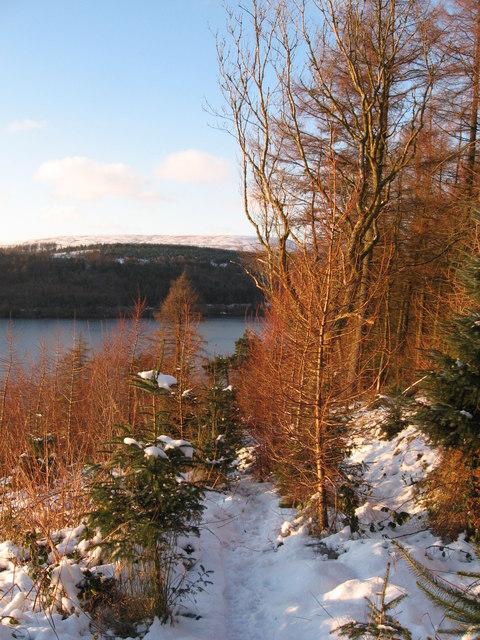 Path descending to Ponsticill Reservoir
