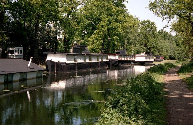 Basingstoke Canal:  Houseboats