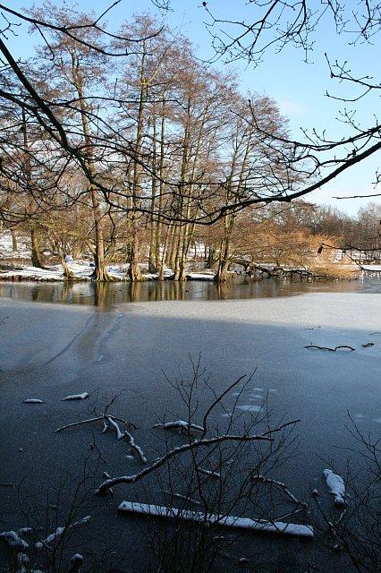 The island in Wollaton Park lake