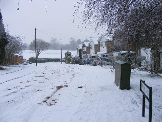 Snowy Green Acres