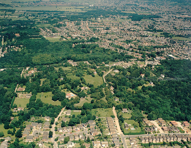 Aerial view of Coombe Wood and Thundersley Glen
