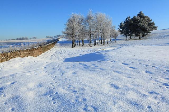 Turnhouse Golf Club Boundary