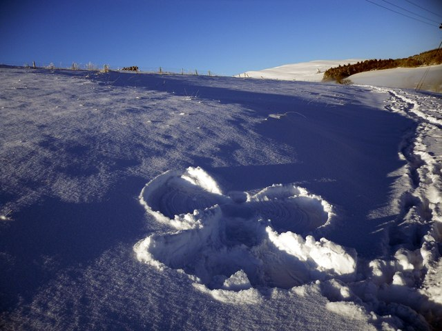 Snow Angel at Blynlee