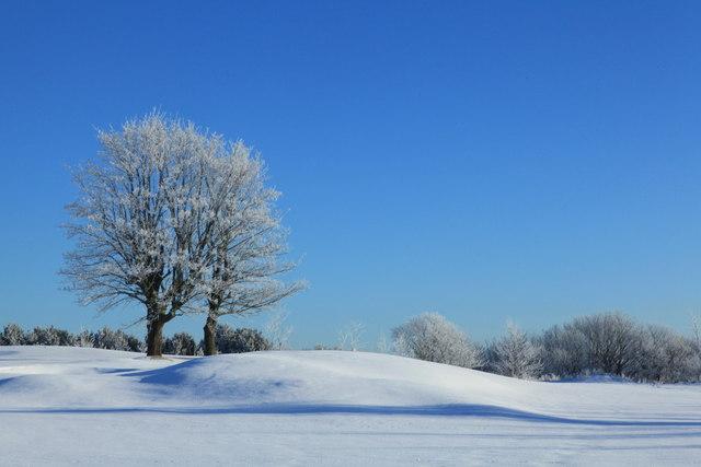 A Crisp Day on Turnhouse Golf Course