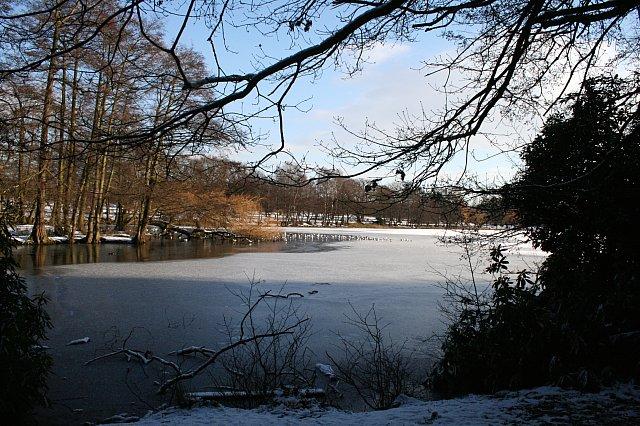 Wollaton Park lake