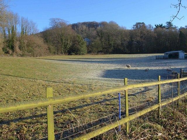 Pasture by Ellerncroft Road