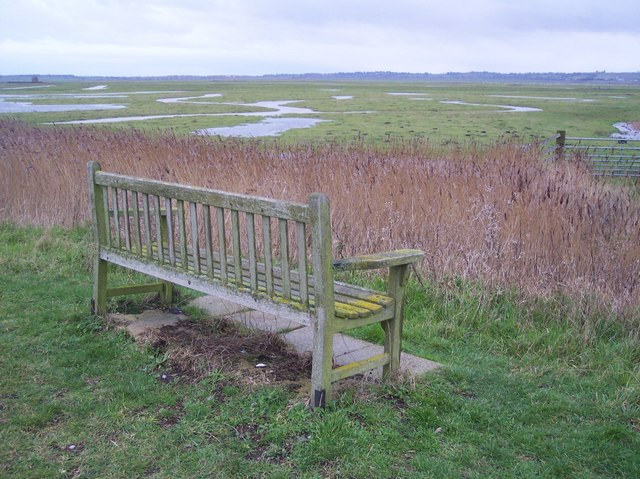 Bench in the Elmley Marshes