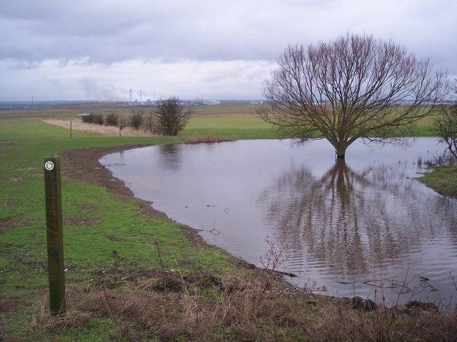 Footpath near King's Hill Farm