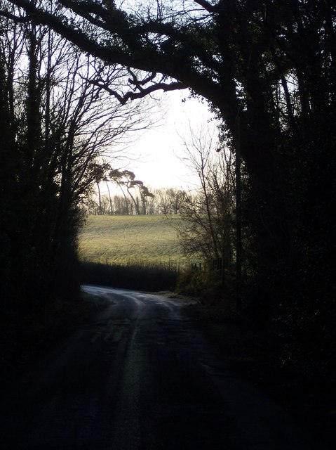 Spelmonden Road through Parsons Wood