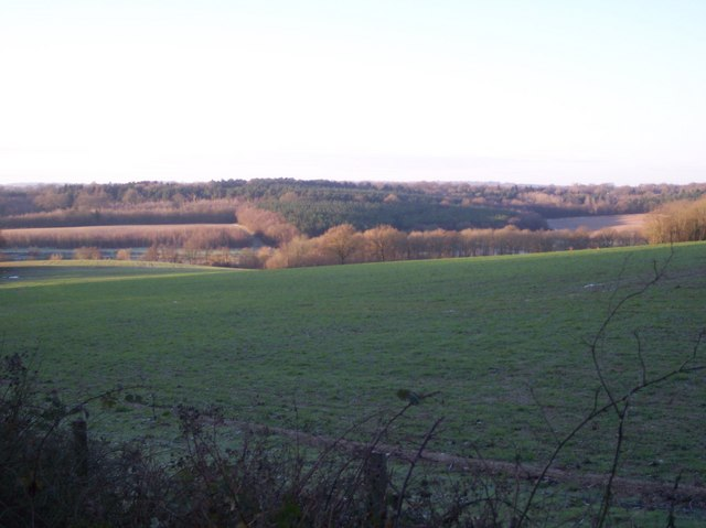 View from Spelmonden Road