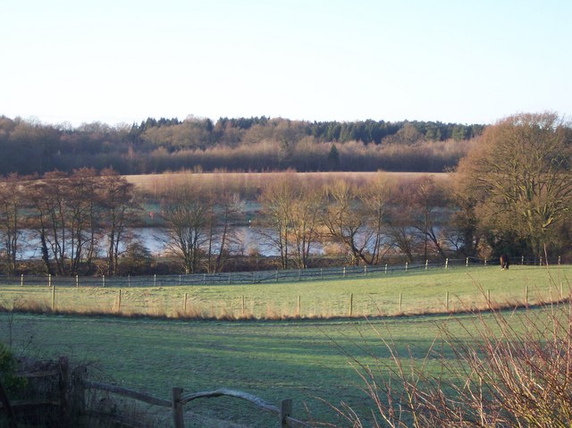 Pond in Elphicks Farm